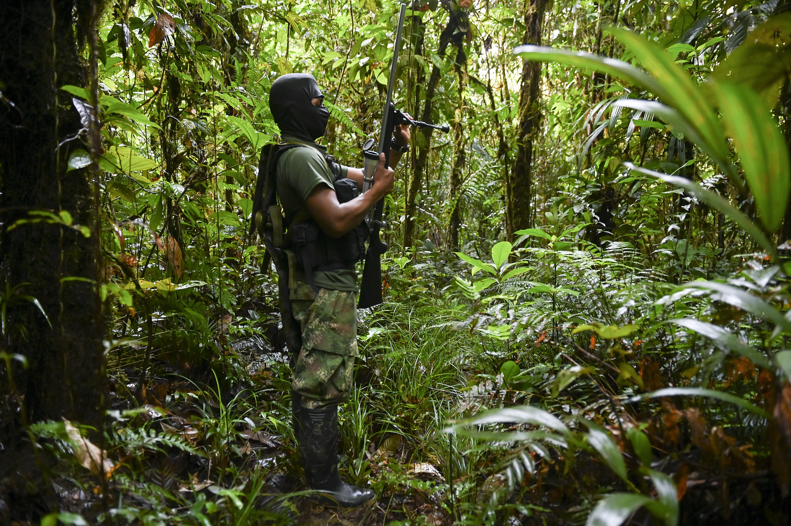 Members of the National Liberation Army (ELN) during training in the jungle